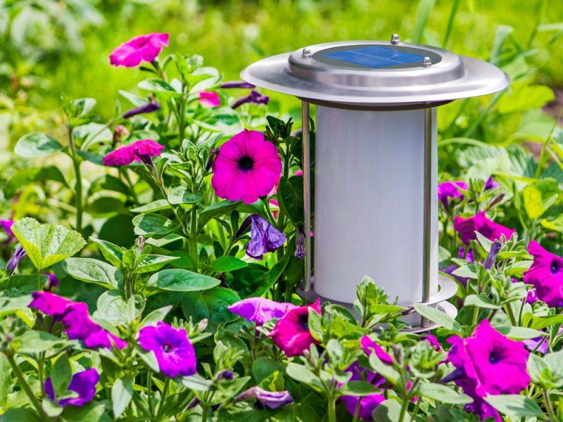 Lampy solarne – właściwości i zastosowanie